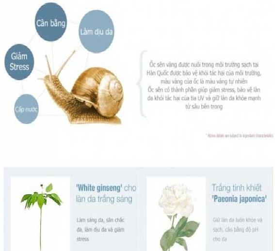kem-duong-da-oc-sen-goodal-premium-snail-tone-up-cream